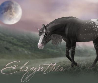 Elzynthia